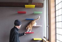 Clever cat furniture diy