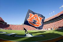 All Auburn All In / by Amanda Banks