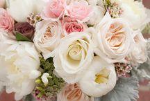 Bouquets / by Ashley Haga