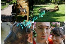Vidéos de Zoos / Vidéos de Zoos  pour grands enfants