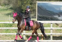 Our Happy Customers photos / Tack2u.co.uk