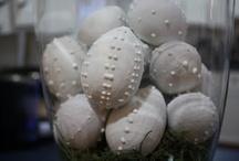 Crafty Schiz ~ Spring/Easter
