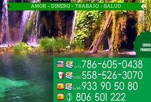 Tarot gay - Tirada de tarot gay / Consulta con nuestros videntes y tarotista expertos en tarot gay. Llama al +34 933 90 50 80 o visita www.tarotbymelissa.com