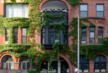 Upper West Side, New York / Upper west side home done by Tumbleweed and Dandelion