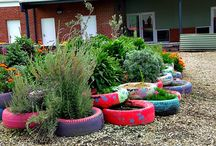 school garden ideas / by Cathie Avraam