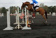 Eventing Show Apparel / To follow our Dress for Success theme, we want to highlight some of the products we see our top customers wearing in the ring. Please feel free to post your pictures and highlight what brands you are wearing as well!