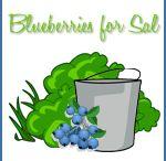 PK: Blueberries for Sal