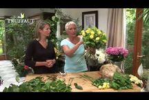 Corsflour-decor flowers -blumen