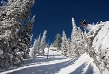 Skiing / by Adam B