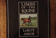 Books on Horses / Books about horses, horse racing, race tracks and much more.