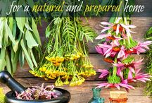 Natural Medicine / How to support the body's own healing system