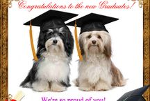Graduation Day Ecards / Graduation is not the end, its the beginning.Commemorate this start with wonderful greetings of 123Greetings Ecards. http://www.123greetings.com/events/graduation_month/ / by 123Greetings Ecards