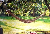 Perfect picnic plans