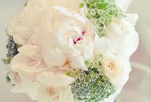 Wedding Bouquets / by Terri Cornett