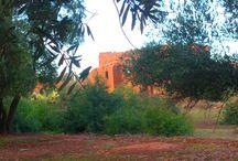 Douar Sidi Rahou / Village traditionnel berbère niché au pied de la Vallée du Zat et du Haut Atlas marocain. Berber village.