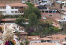 Retour de voyage : Pérou / Partez avec nous pour une nouvelle destination : Le Pérou.