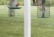 Bird feeding stations and houses