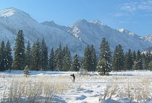 Nordic Ski Trails / by Ski Leavenworth