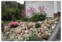 stonebeds gardening