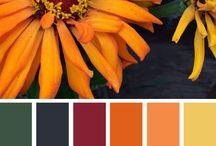 Colour / barevné kombinace