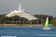 Disney/Florida