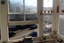 DECOR / room decor & window views
