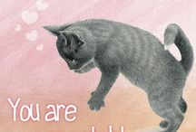 Franciens katten Wenskaarten/ Franciens Cats greetingcards