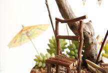 fairy gardens / by Wendy Klassen
