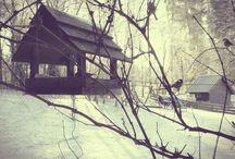 Zima w Siedlisku na Wygonie / Zima w Siedlisku na Wygonie jest mroźna, ale w pokojach przytulnie i ciepło :)