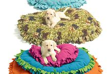 Cutest pet beds