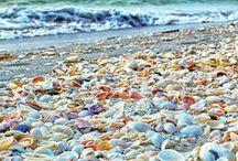 Southeast Beaches- Southern Coastal