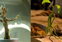 Bowtruckle & Groot