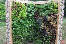 Veggie Garden. ..