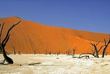 Namibia Holidays / Namibia is a land of contrasting landscapes - from the rainless desert of the 'Skeleton Coast' to the game-rich plains of Etosha, and from the incredible sand dunes of Sossusvlei to the majesty of the Fish River Canyon, one of the deepest gorges on the surface of the planet.  We offer a range of Guaranteed Small Group safaris as well as personalised safaris.