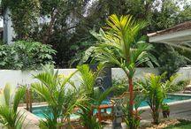 Neemrana Hotels (Le Colonial)  - Fort Cochin/Kerala / Neemrana Hotels (Le Colonial)  - Fort Cochin/Kerala