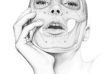 anatomia de rostro