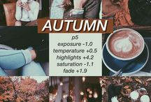Insta theme autumn fall