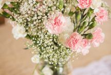 Carnations for Wedding