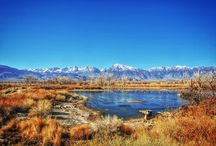 Winter in the Owens Valley