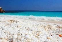 plaża morze