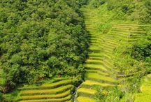 Philippines Travel Photos