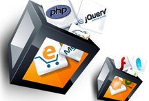 Catalog Design / Ammiaya Web Solutions being a professional Catalog Designing Company in Delhi, India has designed many websites that fits to our client business. Our Catalog design service and plans are dedicated to provide web design service to small, medium and large business.