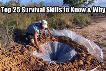 I Will Survive!
