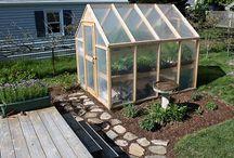 Drivhus, dyrking og planter