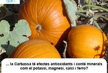 Carbassa / Calabaza  / Aquí trobaràs curiositats sobre la carbassa / Aquí encontrarás curiosidades sobre la calabaza