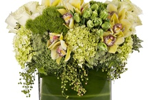 Small arrangements in pots and boxes
