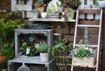 Blumen und Gartenideen