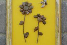 Flori piatra