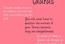 stier!!!! (Taurus)