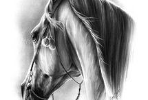 kone na depkáčiky
